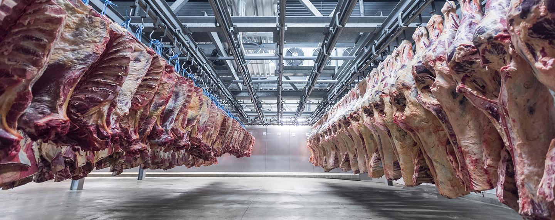 hogeslag olst vleesgroothandel